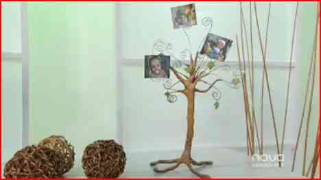 Como Decorar Un Arbol Genealogico.Un Arbol Genealogico Para Decorar Con Fotos Video Decoracion