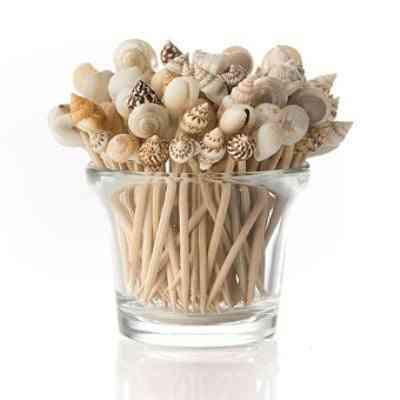 jarrones de conchas