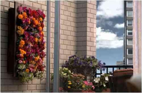 Hacer un bonito jardín vertical
