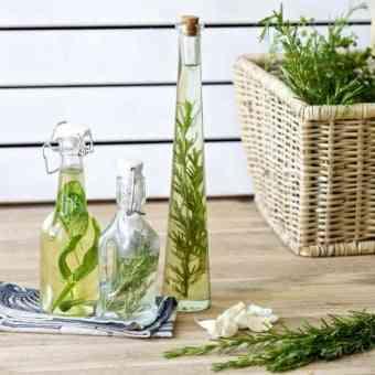 botes de cristal con plantas