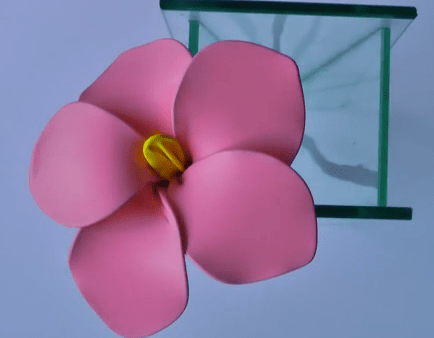 flor DIY