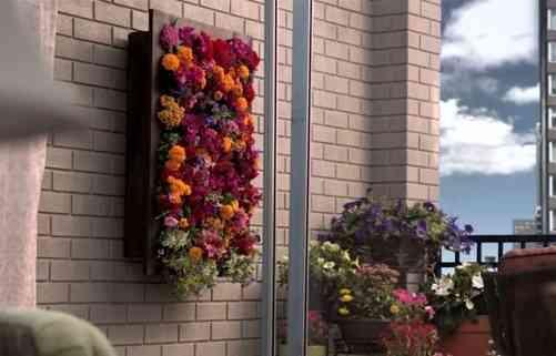 jardín vertical para decorar