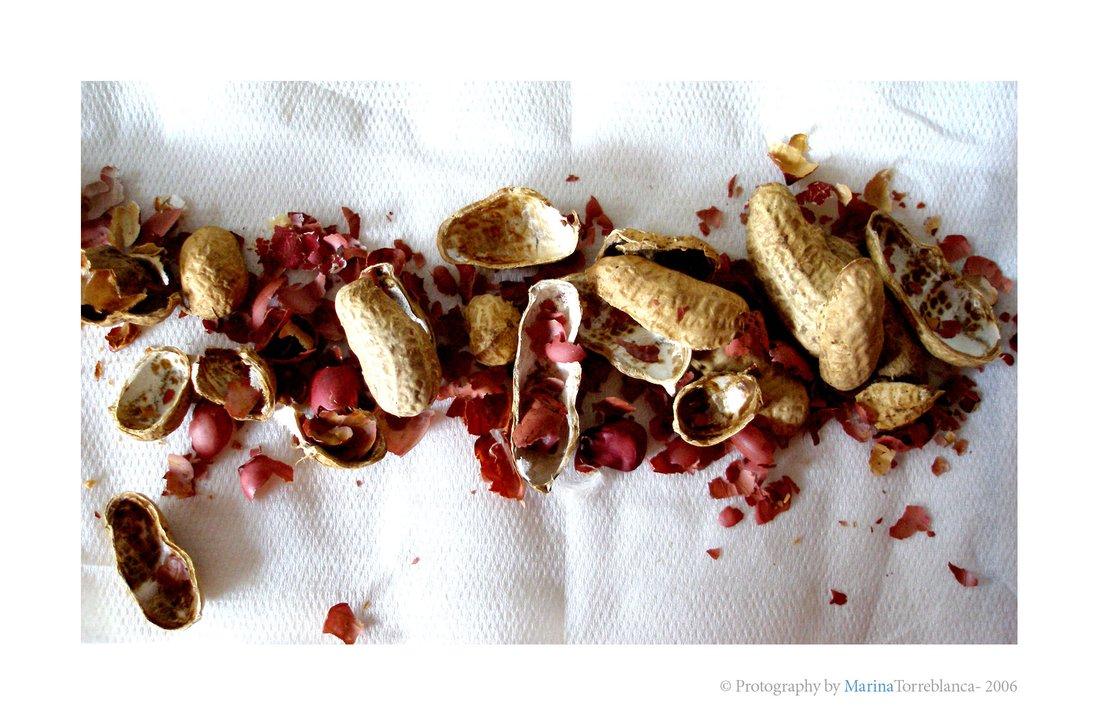 cacahuetes pelados y puestos en fila