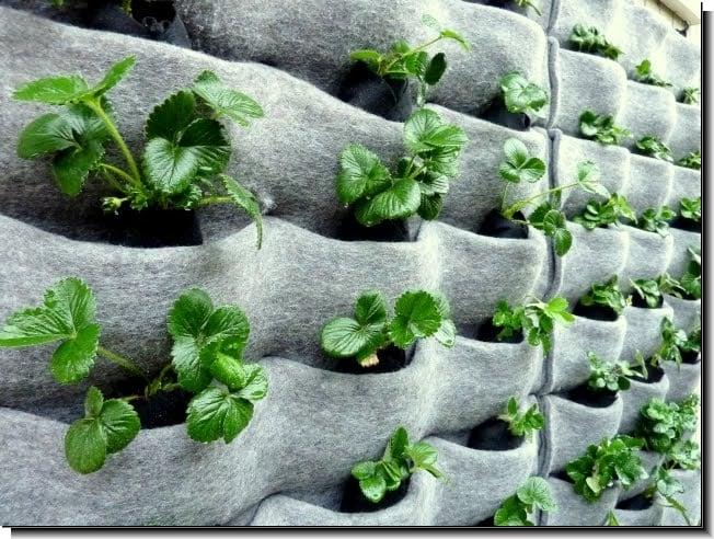 ideas para fabricar jardines verticales