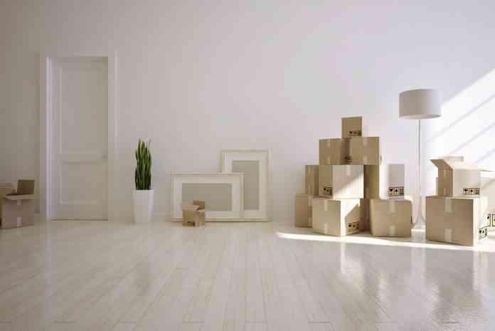 cajas mudanzas